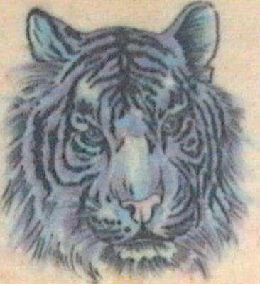 Tattoostiger023